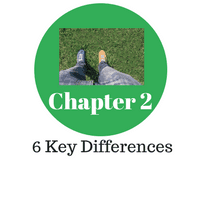 Chapter 2: 6 Key Differences